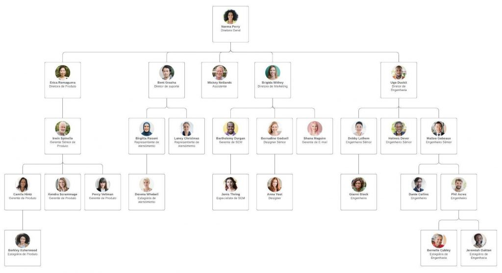 O que é estrutura organizacional? Veja tudo o que você precisa saber sobre! - Foto: LC MAS